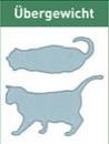 schematische Darstellung übergewichtige Katze