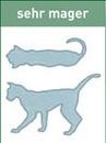 schmatische Darstellung sehr magere Katze