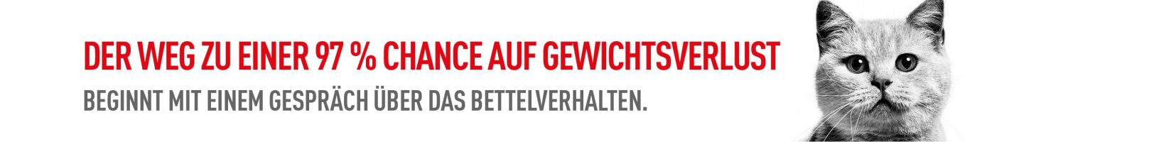 Bettelverhalten Banner_compressed