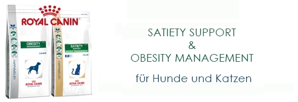 SatietyObesity3