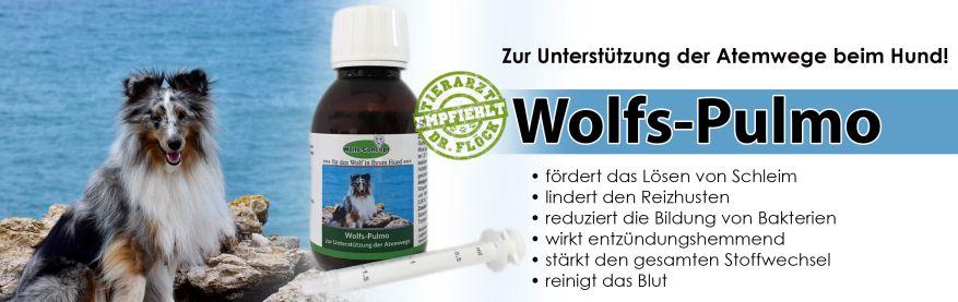 Wolfosan: Ein Ergänzungsfuttermittel auf Naturkräuterbasis zur Unterstützung des gesamten Atmungsapparates.  Altbewerte Kräuter in einer speziell für Hunde zusammengesetzten Mischung, die zusätzlich die Selbstreinigungskräfte aktivieren. Die enthaltenen antimikrobiellen und immunstärkenden Komponenten fördern die Gesunderhaltung der Atemwege unserer Hunde.
