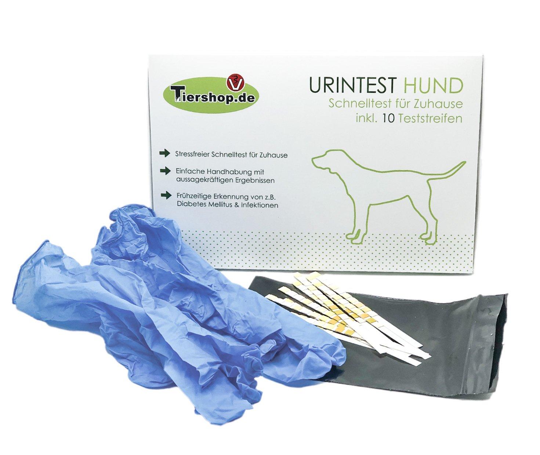 UrintestHund