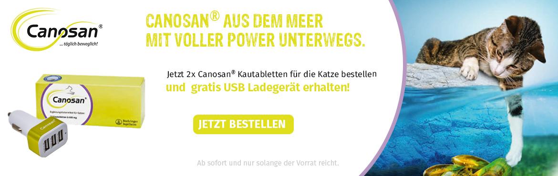 P210033_USB_Aktion_tiershop-de_Banner_K1